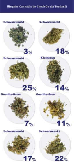 Cannabis Measurements
